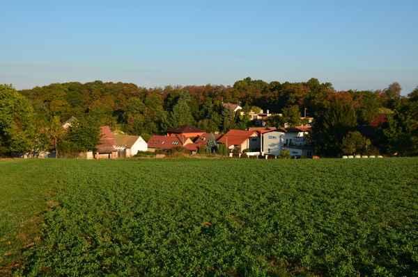 Pohled na obec Kuří.
