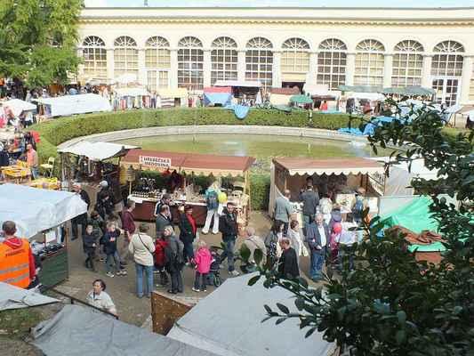 Areál parku u Zámeckého skleníku v neděli před polednem.