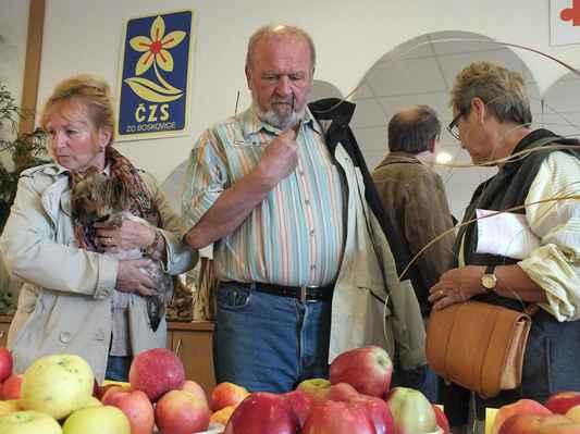 Návštěvníci výstavy obdivují plody celoroční práce zahrádkářů.