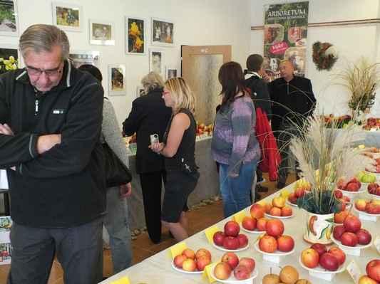 Návštěvníci výstavy obdivují plody celoroční práce zahrádkářů. V pozadí Josef Janků.