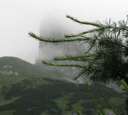 090801 130v - za kapičkami je nepřehlédnutelný kopec Sturzhahn (2031 m), za chvíli staneme na jeho úpatí
